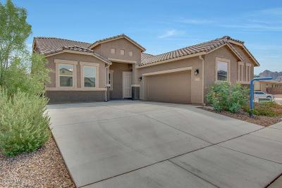 Marana Single Family Home Active Contingent: 9776 N Howling Wolf Road
