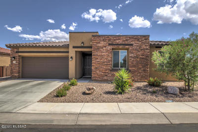 Sahuarita Single Family Home For Sale: 1137 W Golden Meadow Path