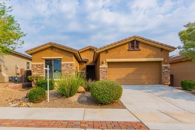 Marana Single Family Home Active Contingent: 12698 N Gentle Rain Drive