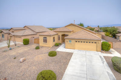 Vail Single Family Home Active Contingent: 778 W Grantham Street