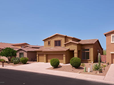 Marana Single Family Home For Sale: 8419 N Amber Burst Drive