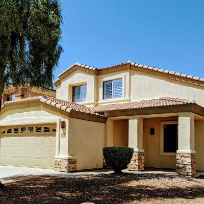 Sahuarita Single Family Home For Sale: 333 E Camino Rancho Seguro