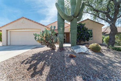 Marana Single Family Home Active Contingent: 5095 W Thistlepoppy Loop