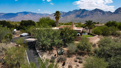 Oro Valley Single Family Home For Sale: 11140 N Poinsettia Drive
