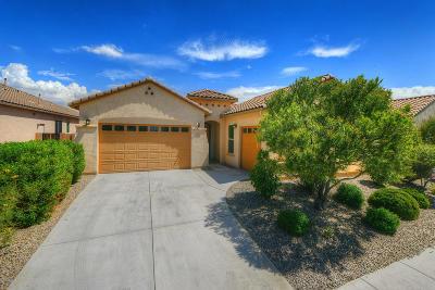 Marana Single Family Home For Sale: 12416 N Wind Runner Parkway