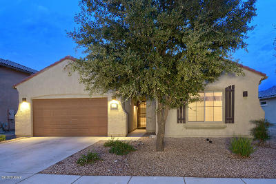 Marana Single Family Home Active Contingent: 12539 N Barbadense Drive