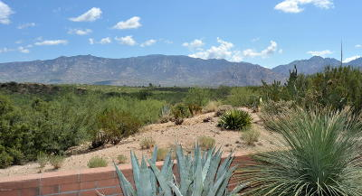 Oro Valley Single Family Home Active Contingent: 14300 N Carissa Drive