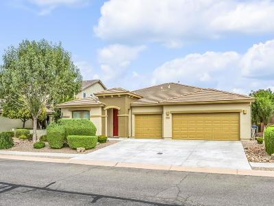 Sahuarita Single Family Home Active Contingent: 913 E Empire Canyon Lane