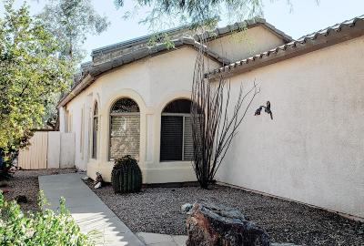 Sahuarita Single Family Home For Sale: 404 E Camino Rancho Cielo