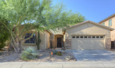 Sahuarita Single Family Home Active Contingent: 841 E Deer Spring Canyon Place