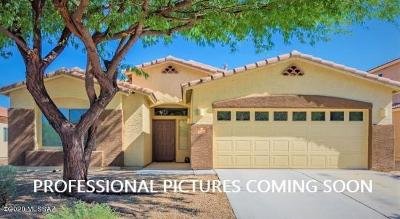 Vail Single Family Home Active Contingent: 17582 S Green Willow Place