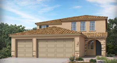 Marana Single Family Home For Sale: 10840 W Pintail Drive