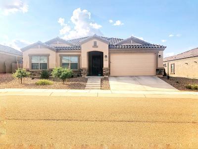 Sahuarita Single Family Home For Sale: 17782 S Silent Meadows Pth