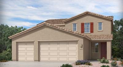 Marana Single Family Home For Sale: 12050 N Goldenview Lane