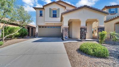 Sahuarita Single Family Home Active Contingent: 975 W Camino Nogal Blanco