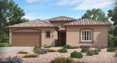 Tucson Single Family Home For Sale: 1626 W Aristides Street