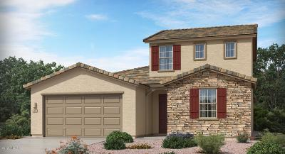 Vail Single Family Home For Sale: 12867 S Pantano View Drive
