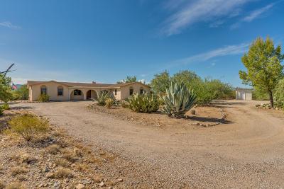 Sahuarita Single Family Home For Sale: 6484 E Camino Del Toro