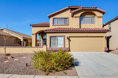 Sahuarita Single Family Home For Sale: 385 E Camino Del Abeto