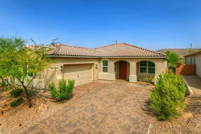Marana Single Family Home Active Contingent: 7200 W Secret Bluff Pass