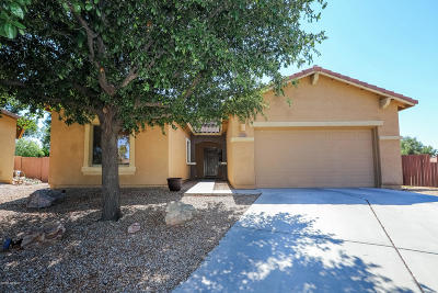 Sahuarita Single Family Home Active Contingent: 874 E Deer Spring Canyon Place Place