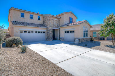Oro Valley Single Family Home Active Contingent: 11788 N Key Lime Place
