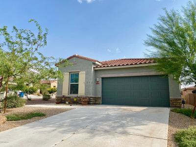 Vail Single Family Home Active Contingent: 14264 E Axle Drive