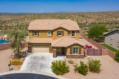 Tucson Single Family Home For Sale: 60766 E Eagle Ridge Drive
