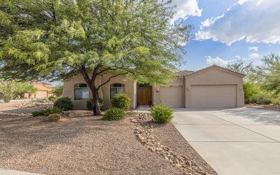 Vail Single Family Home Active Contingent: 14538 E Desert Plume Court