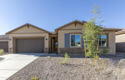 Tucson Single Family Home For Sale: 732 E Romsdalen Road