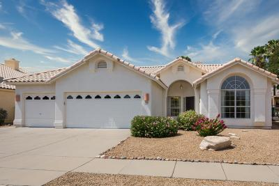 Oro Valley Single Family Home Active Contingent: 11341 N Silver Pheasant Loop