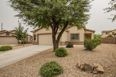 Marana Single Family Home Active Contingent: 11066 W Fallen Willow Drive