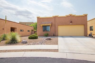 Tucson Single Family Home For Sale: 2785 N Bell Hollow Place