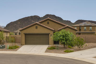 Marana Single Family Home Active Contingent: 10364 Blue Roan Court