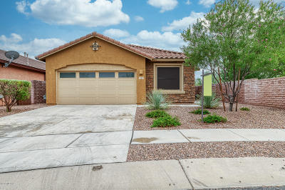 Oro Valley Single Family Home For Sale: 252 E Painted Pottery Place
