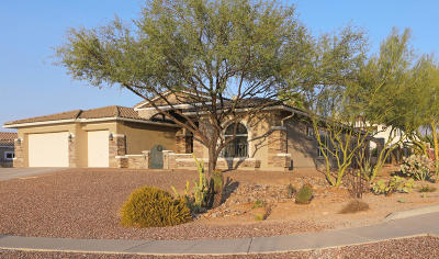 Oro Valley Single Family Home For Sale: 12642 N Piping Rock Road