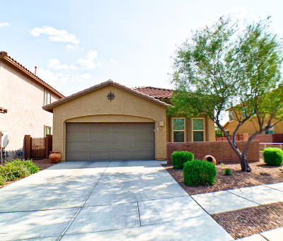 Oro Valley Single Family Home For Sale: 300 E Painted Pottery Place