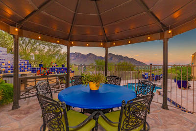 Oro Valley Single Family Home For Sale: 11040 N Poinsettia Drive