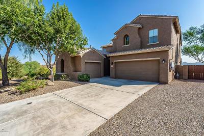 Marana Single Family Home For Sale: 12896 N White Fence Way