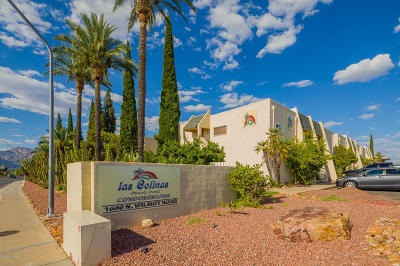Tucson Condo For Sale: 1600 N Wilmot Road #224