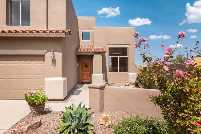Tucson Single Family Home For Sale: 1238 W Crystalline Way