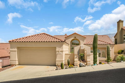 Tucson Single Family Home Active Contingent: 10030 N Bighorn Butte Drive