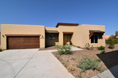 Tucson Single Family Home For Sale: 7984 S Galileo Lane