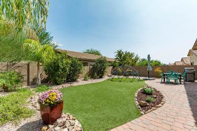 Marana Single Family Home Active Contingent: 12404 N Globe Mallow Place