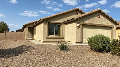 Marana Single Family Home Active Contingent: 11528 W Stone Hearth Street