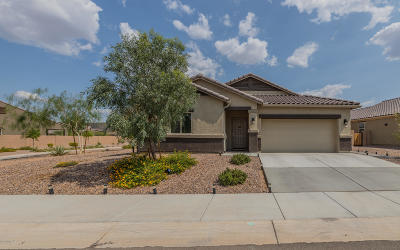 Marana Single Family Home Active Contingent: 9810 N Howling Wolf Road