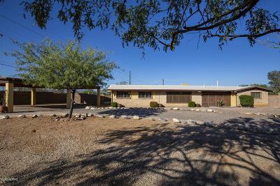 Tucson Single Family Home For Sale: 7201 N San Anna Drive