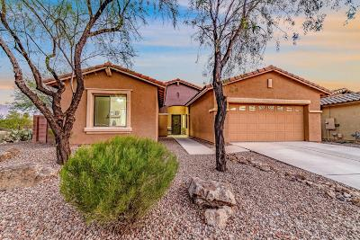 Oro Valley Single Family Home For Sale: 1419 W Red Creek Drive