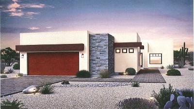 Sahuarita Single Family Home For Sale: 292 N Palomino Run Place