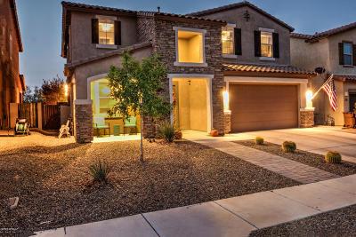 Sahuarita Single Family Home For Sale: 808 W Placita Chilpe